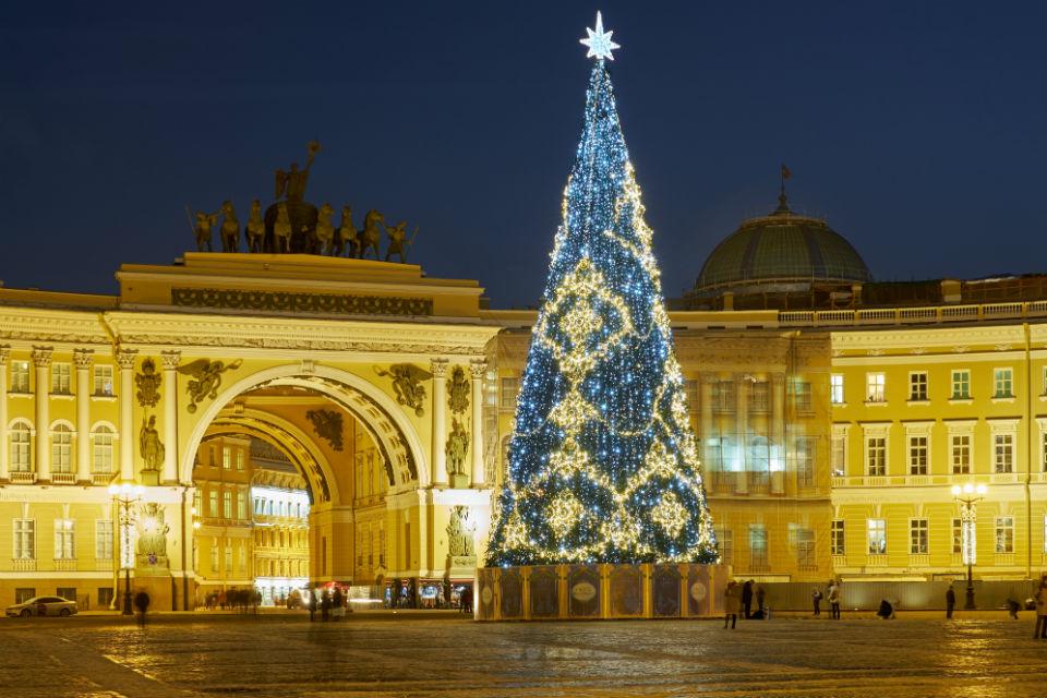 На Дворцовой площади впервые за много лет появится живая новогодняя елка