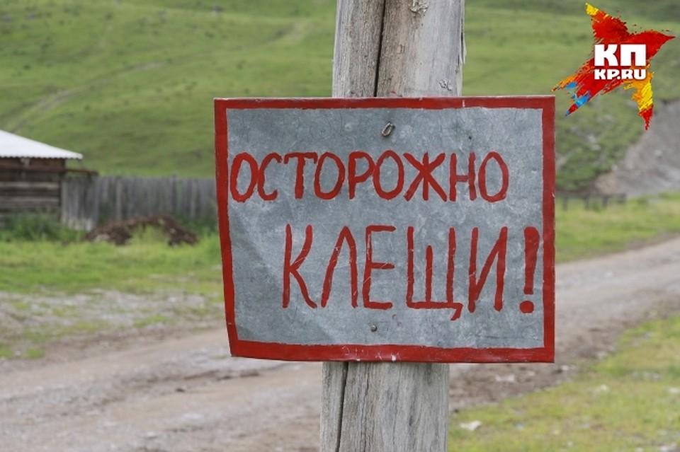 Подосинки дмитровский район поликлиника