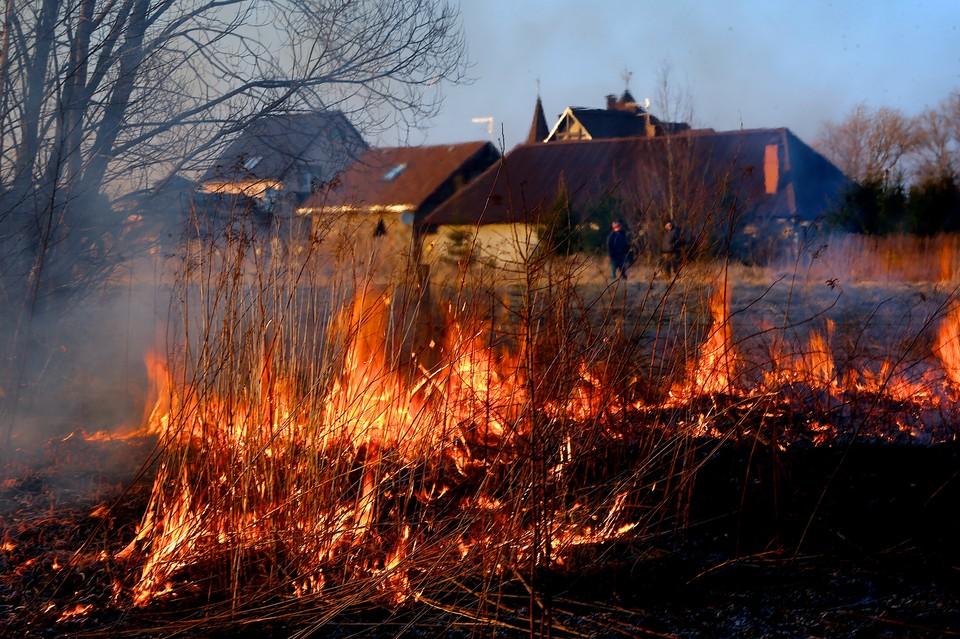 В Ярославле ввели особый противопожарный режим.
