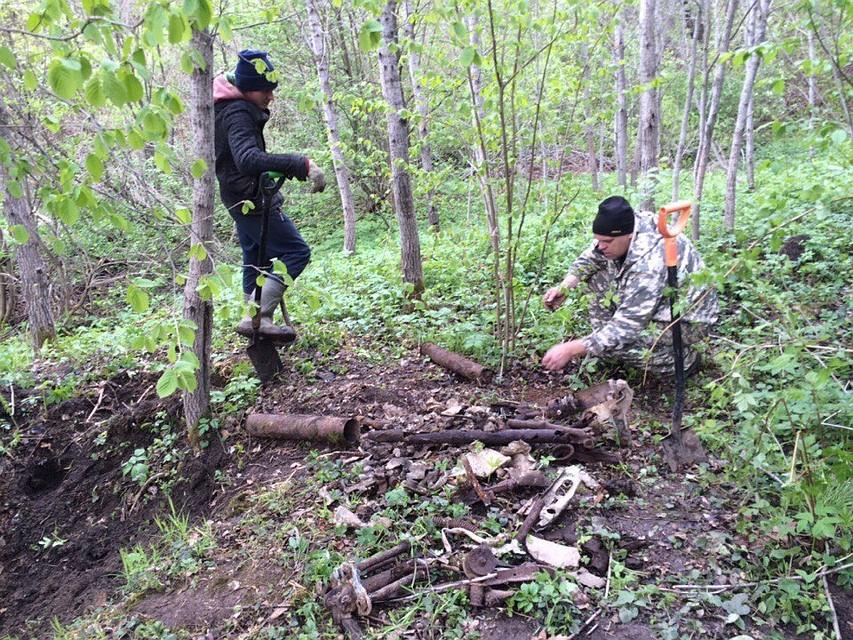 Взяли силой бабку в лесу фото 780-364