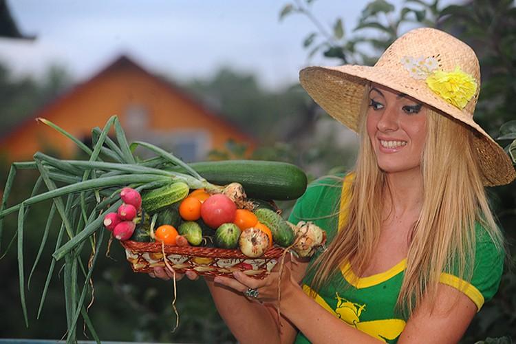 Наши эксперты делятся своими советами, как правильно выращивать, ухаживать, оформлять, подкармливать и так далее