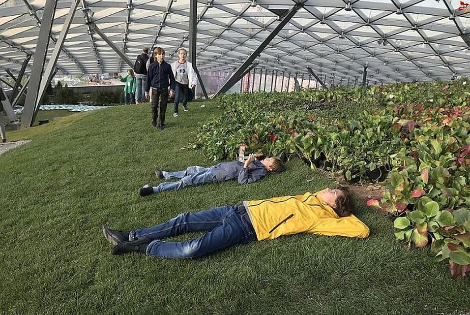фоторепортаж зарядье растения полностью