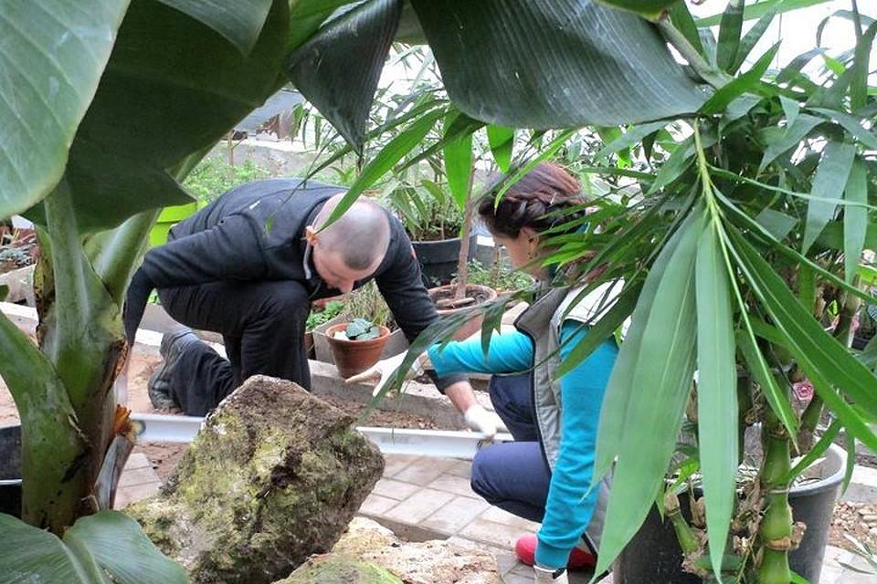 Справка для работы в Москве и МО Ботанический сад (14 линия) Справка для оформления опеки над ребенком Владыкино (14 линия)