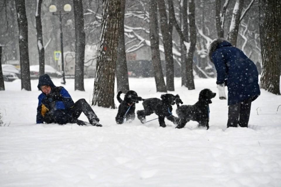 В субботу, 3 февраля, в Москве ожидается сильный снегопад