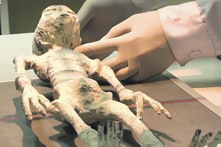 Таких «человечков» четверо. У всех по три пальца. Фото: youtube.com