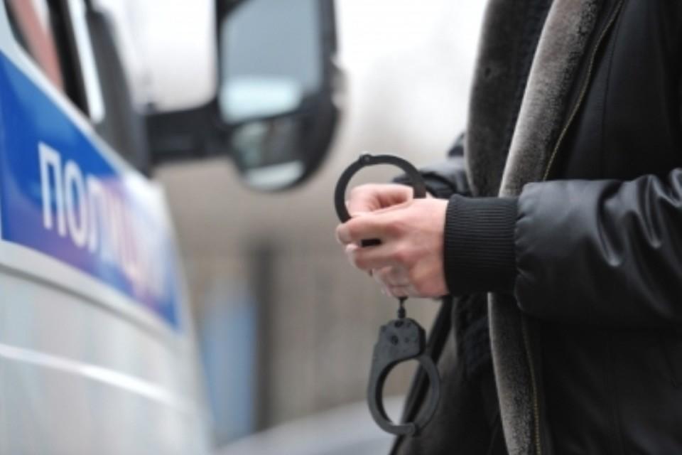 Задержан водитель, сбивший женщину и двоих детей на юго-востоке Москвы