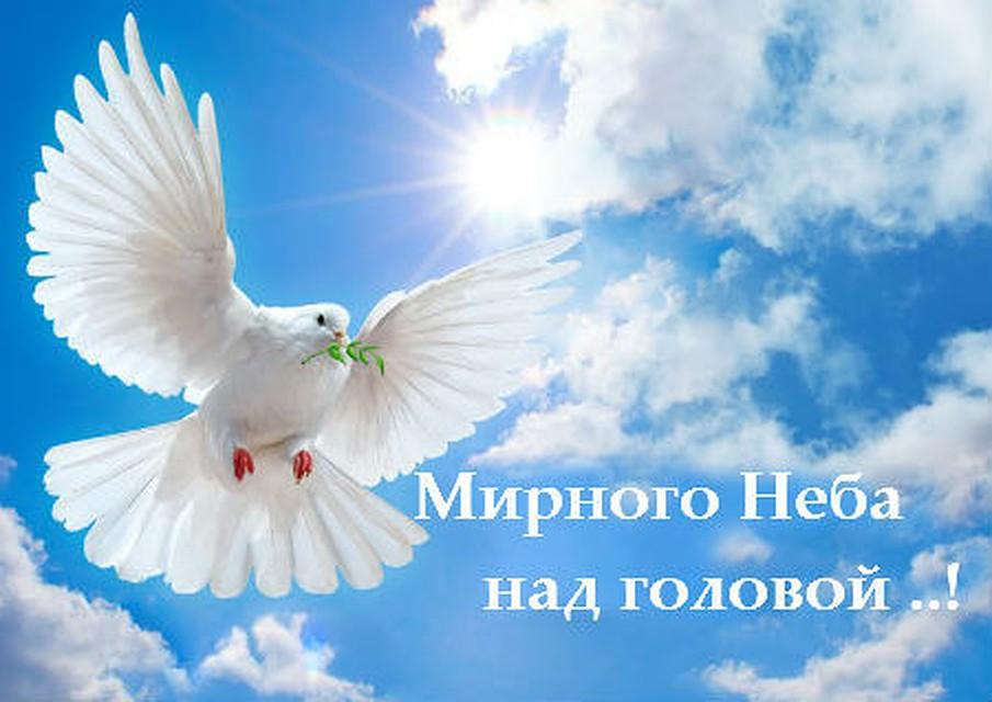 поздравление мирного неба теплого хлеба