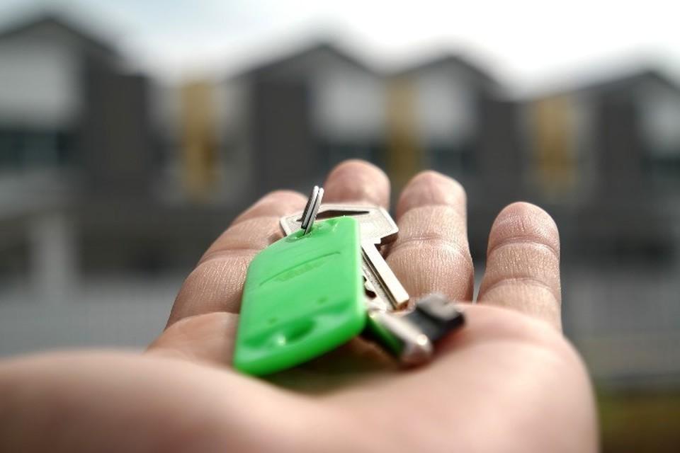 Фото с сайта pixabay.com Лукашенко упростил требования к сдаче жилья в аренду