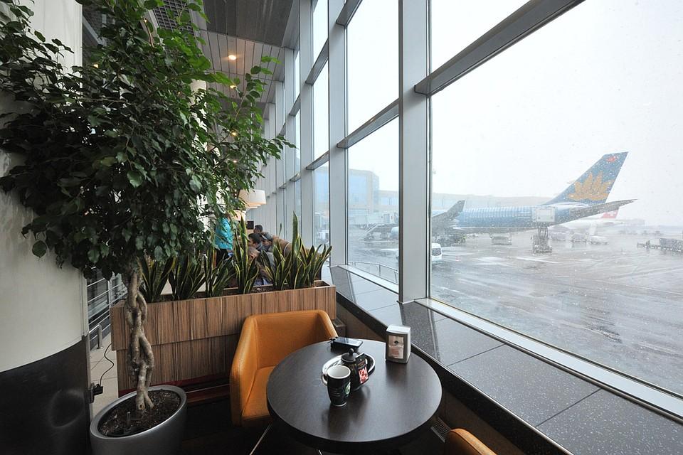 Сетевые кафе в столичных аэропортах снизят цены к концу апреля