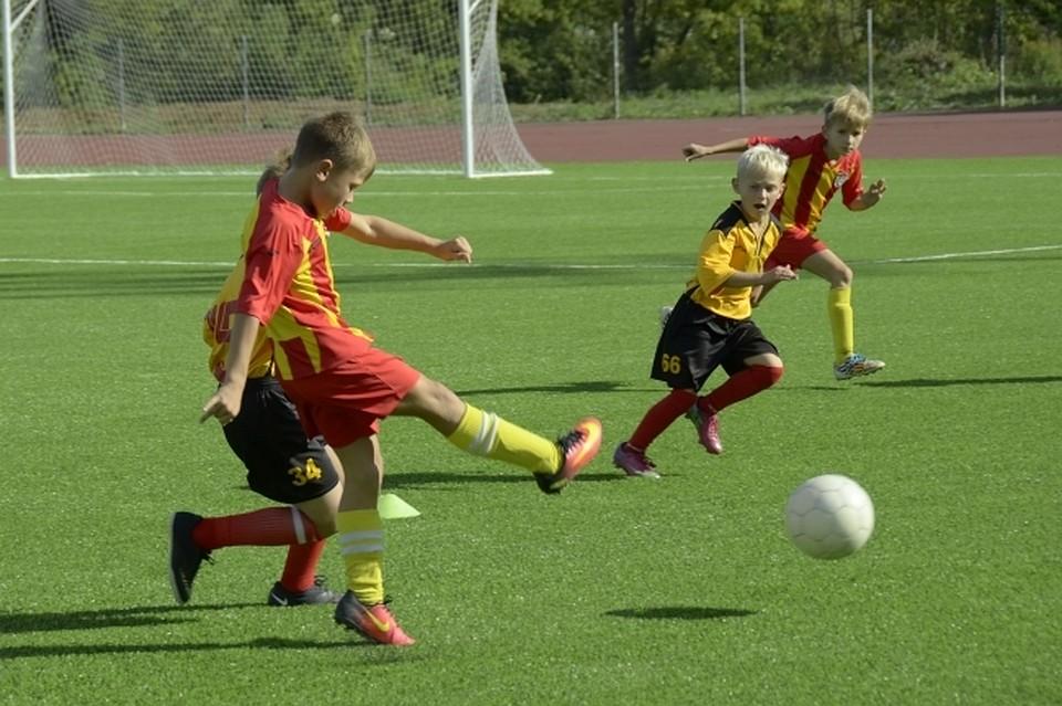 Футбольные секции Ростова-на-Дону для детей  выбираем, куда отдать ребенка 6e4357b06e0