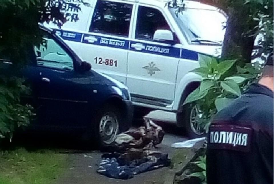 В Екатеринбурге пенсионерка вытащила мумию своего мужа на площадку и бросила