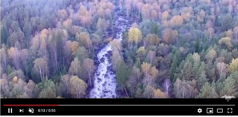 Кадр с видео.