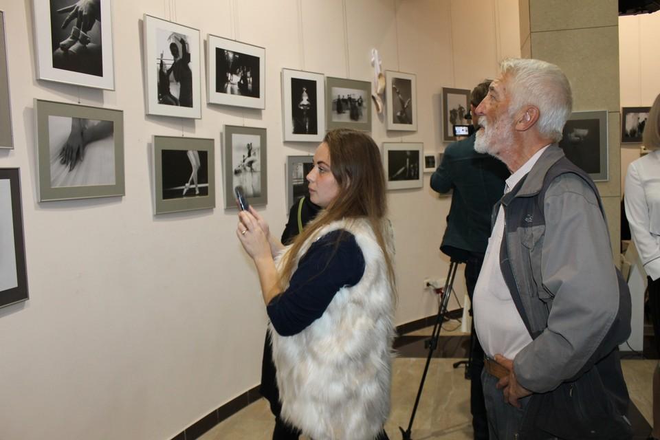 Перед посетителями выставки предстают фотоработы отличного качества с правильно подобранной экспозицией и ракурсом