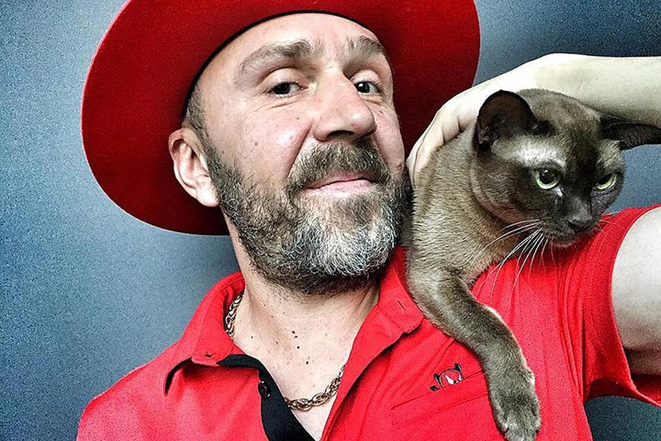 Картинки по запросу У Шнурова кот брутальнее хозяина