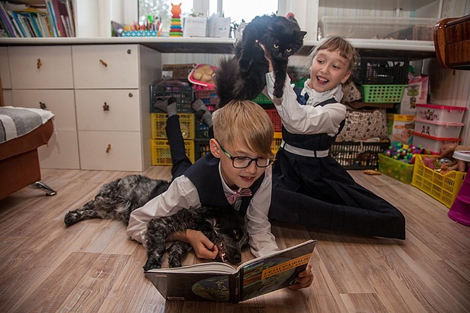 Как в украине забрать ребенка на домашнее обучение беспокрасочная система удаления вмятин обучение инструмент купить украина