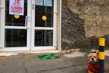 Выборы губернатора Приморья: явка составила 46,35 % избирателей