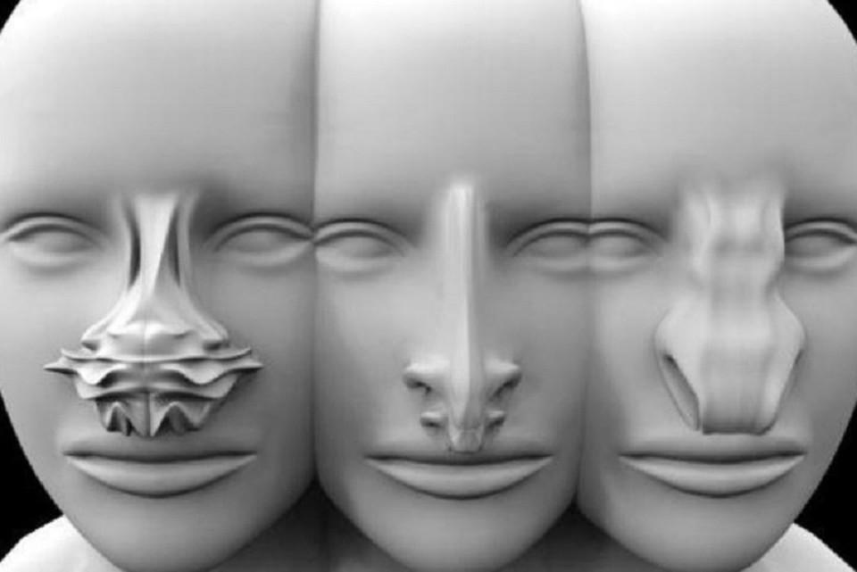 Носы для Марса напечатали на 3D-принтере. ФОТО: http://artes.ucp.pt/citarj/article/view/568/262