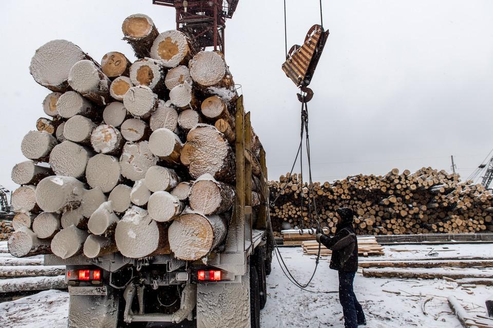 Российский лес перед отправкой в Китай.