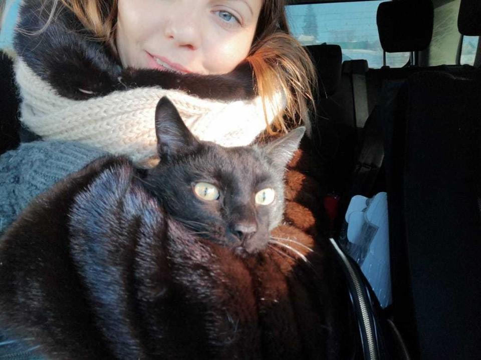 Кот Кузя по пути домой.