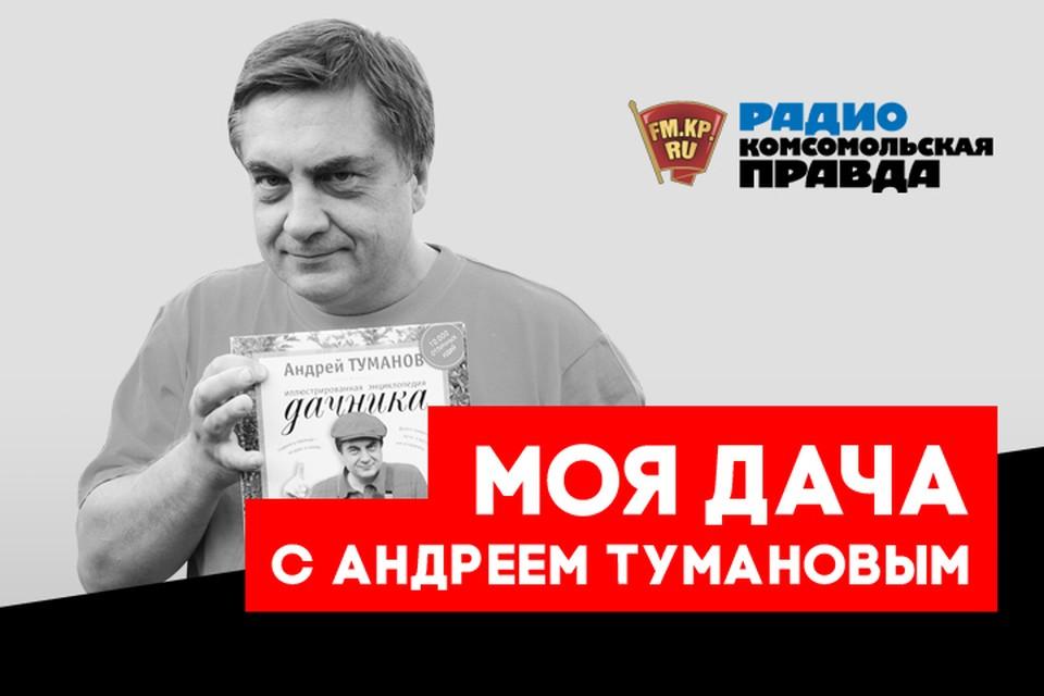 Полезные советы от главного дачника страны Андрея Туманова