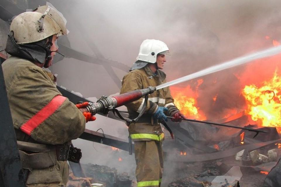 Пожар в Уссурийске вызвал ажиотаж в соцсетях. Фото: mchs.gov.ru