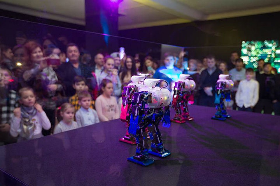 INNOVATIC FEST ROBOSHOW