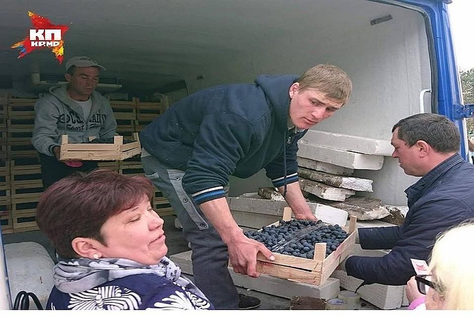 Молдаванин снова рад спасти страну и виноград: В центре Кишинева фермеры будут продавать фрукты по бросовым ценам!