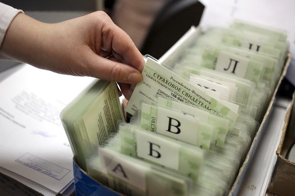 В России отменили бумажный СНИЛС. Фото: Артем Геодакян/ТАСС