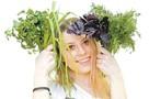 Станут ли наши фермерские продукты органическими?