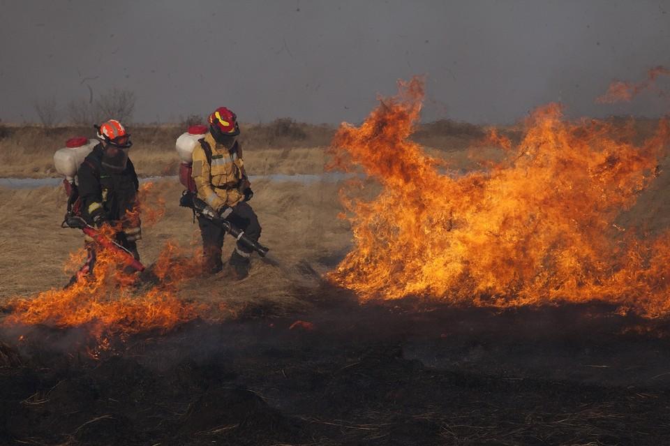 Амурская область горит, несмотря на снег и дождь. Фото: Соцсети, страница Григория Куксина