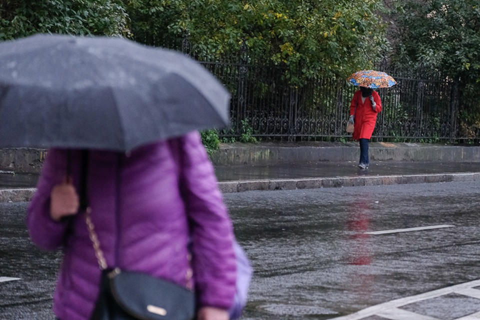 Местами пройдет умеренный дождь с грозой. Порывы ветра будут достигать 15 метров в секунду.