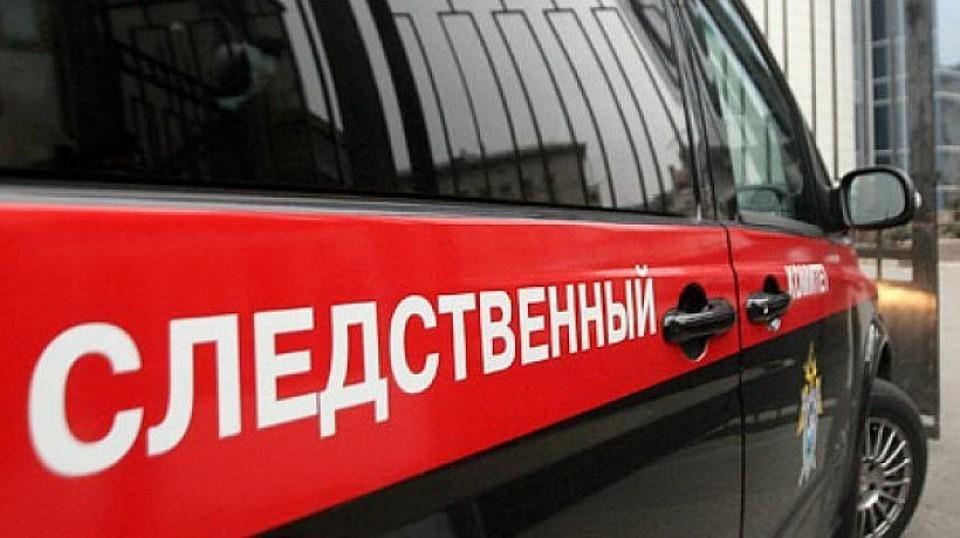 СКР возбудил уголовное дело по факту беременности 11-летней школьницы в Подмосковье. Фото: пресс-служба ведомства
