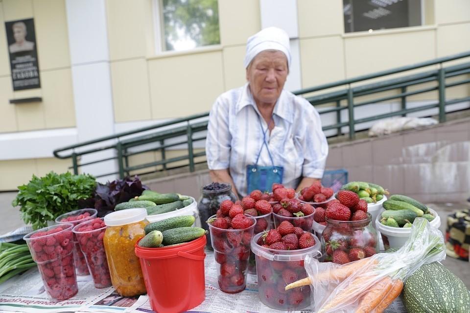 Российские депутаты предложили создать в деревнях пункты приема ягод