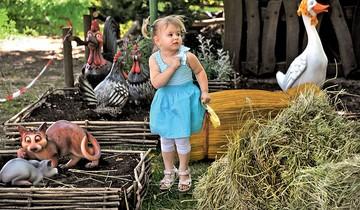 """""""Экономит воду и удобряет землю"""": Сколько проку от сена на огороде"""
