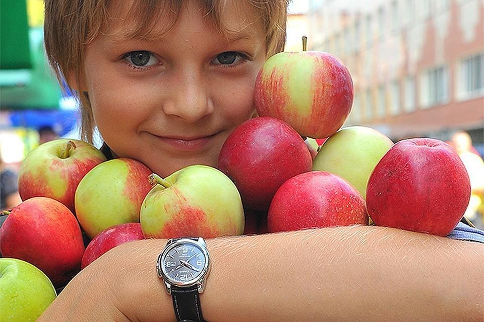 Для проведения эксперимента биологи взяли обычные «магазинные» и органические «домашние» яблоки