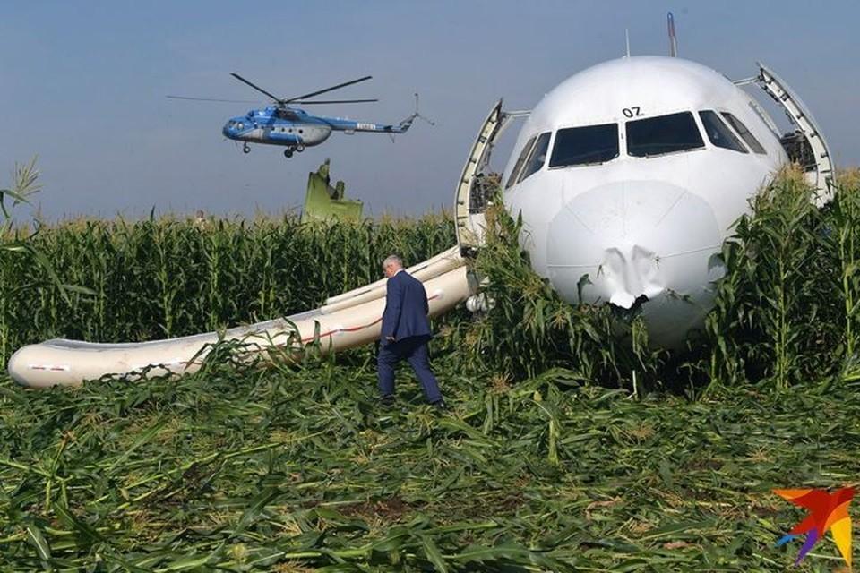 Пилоты смогли посадить судно посреди кукурузного поля, почти без повреждений.