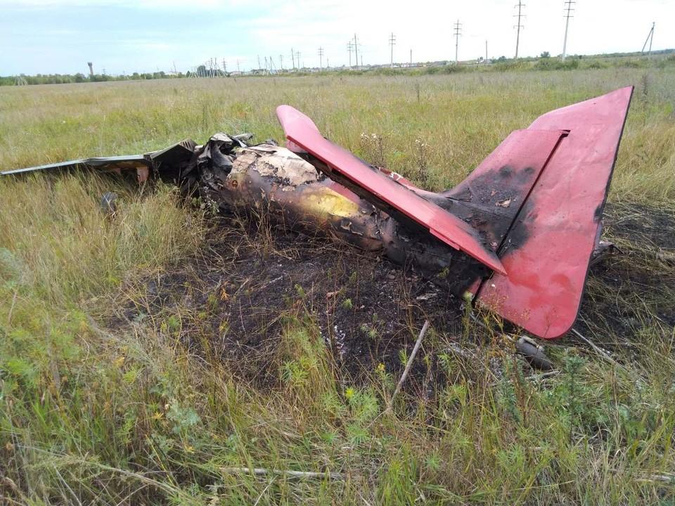 Самолет рухнул прямо в поле. Фото предоставлено МЧС РФ