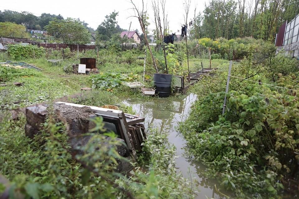 По данным синоптиков, уровни воды в реках уже приближаются к показателям нормы. Фото: администрация Приморского края.