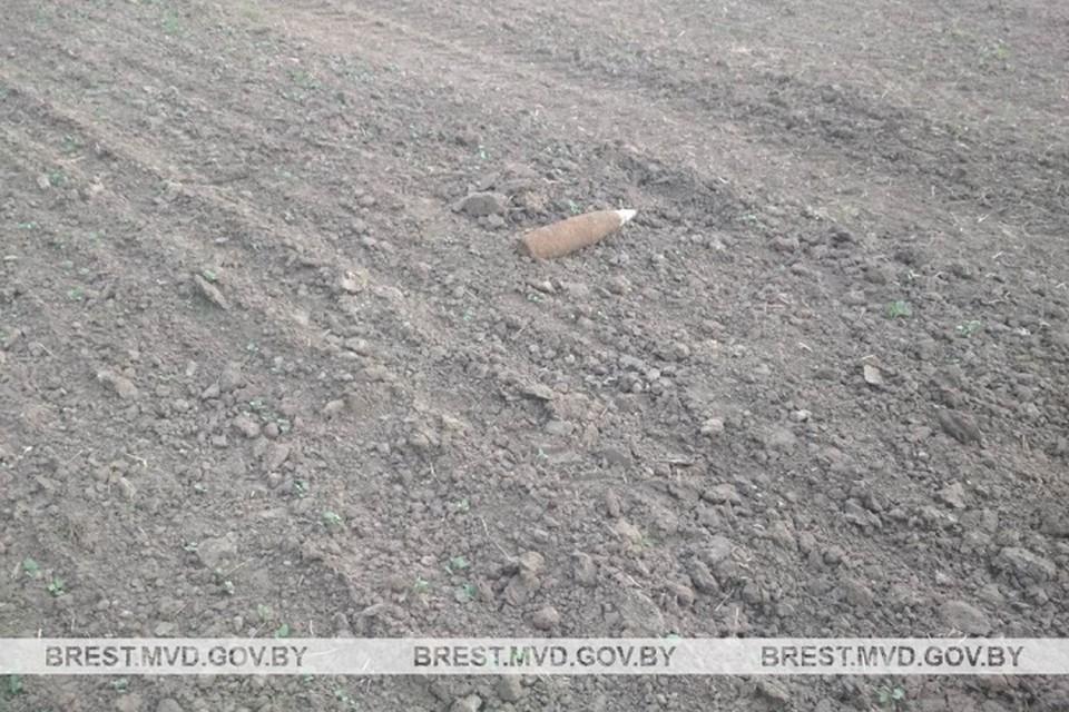 Рабочие мусороперерабатывающего завода нашли на поле снаряд. Фото: УВД Брестского облисполкома.