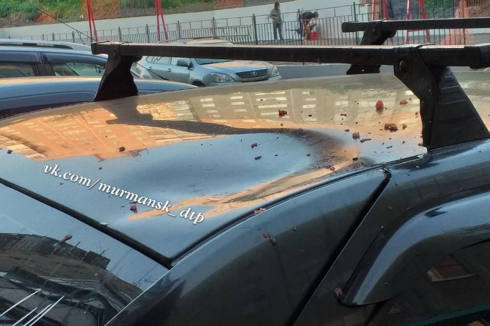 """Ягодка помяла крышу Renault Logan. Фото: """"Мурманск ДТП ЧП"""""""