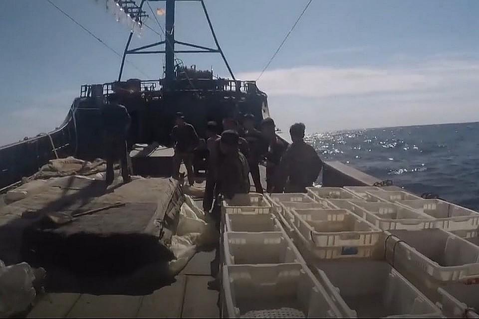 Почти за две недели приморские пограничники задержали порядка 500 браконьеров из Северной Кореи