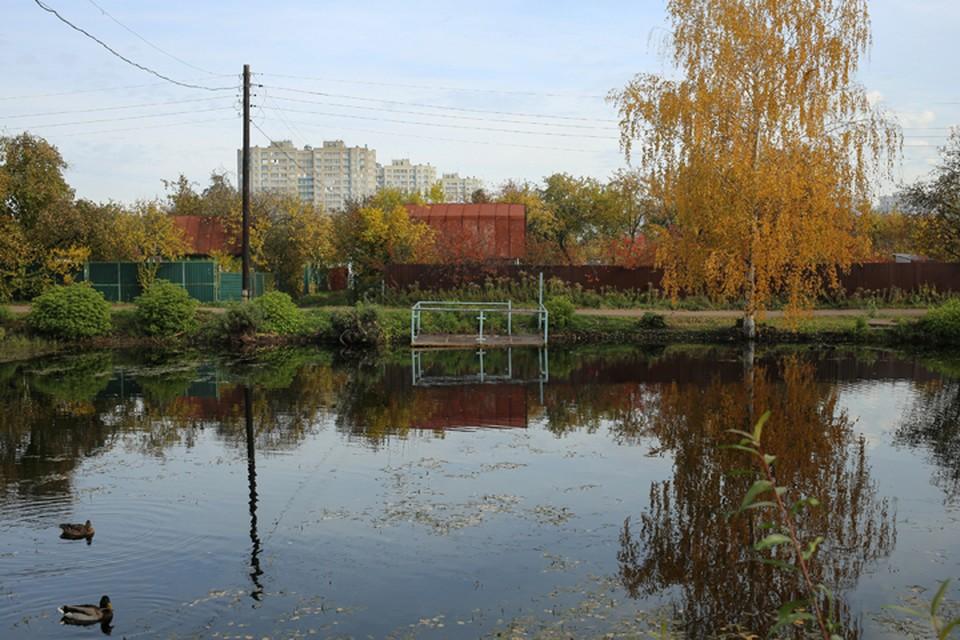 В Автозаводском районе собираются проложить дорогу прямо по садовому товариществу.