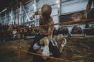 Топ-20 самых эмоциональных фото с боев без правил в Ижевске