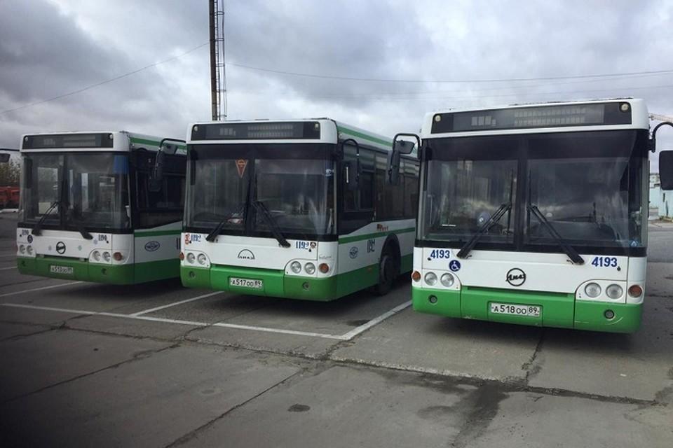 Tele2 запустила бесплатный Wi-Fi в автобусах Нового Уренгоя и Ноябрьска Фото: Tele2
