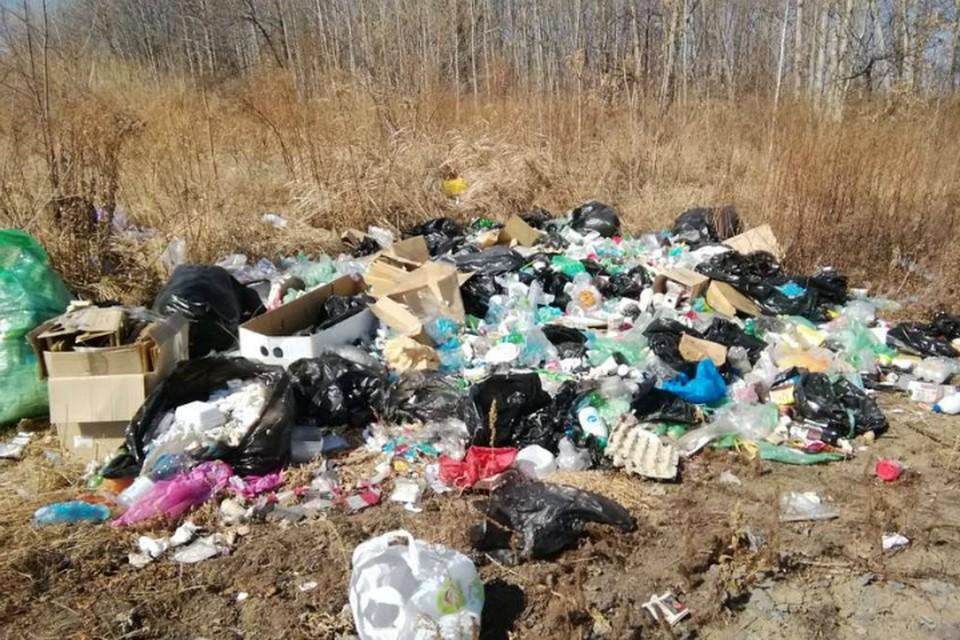 Драгоценную почву в Хабаровском крае освободили от мусора