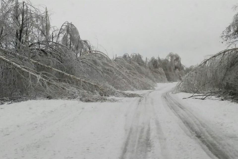 По прогнозам синоптиков, завтра в Кирове пройдет ледяной дождь. Фото: vk.com/meteokirov