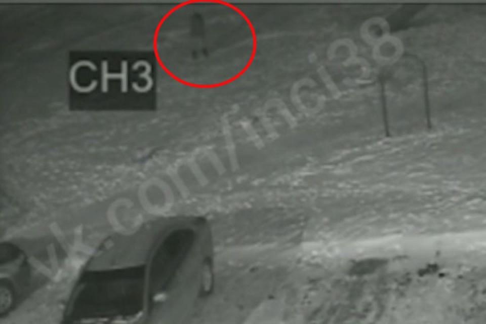"""Затоптали насмерть: ангарчанин вместе с друзьями убил своего кота во дворе. Фото: """"Непростой Ангарск"""""""