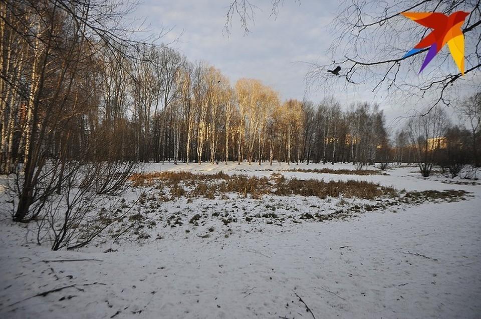 В этом месте, предположительно, закопали тело мальчика