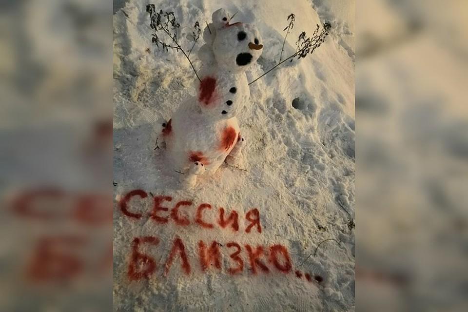 Этот снеговик стоит у общежития №6. Фото: «Признавашки НГТУ»