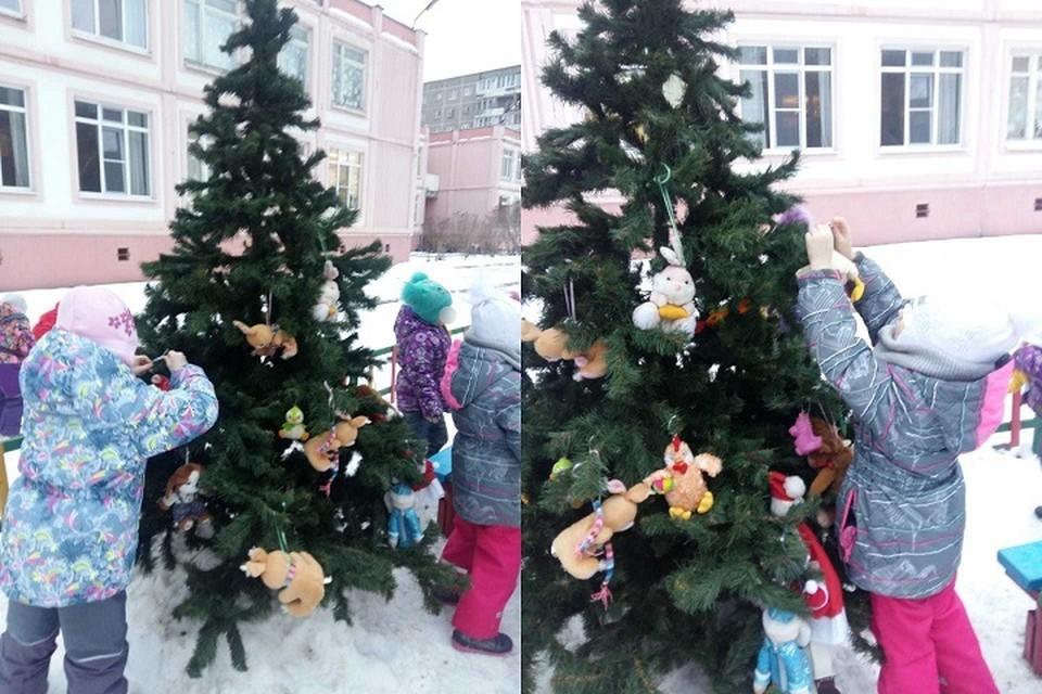 Елочку нарядили в пятницу, а украли в понедельник Фото: предоставлено детским садом №588